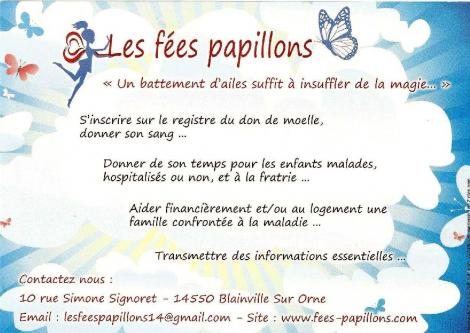 Fees papillons